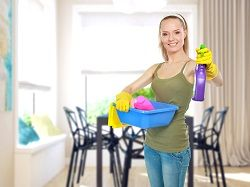 home cleaners w3